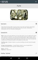 Screenshot of Crystal Guide Pocket Edition