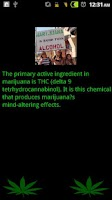 Screenshot of Weed Facts