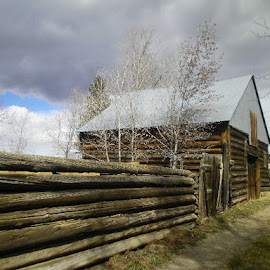 Old Barn and log fence by Verna Harris - Buildings & Architecture Other Exteriors ( co, walden, colorado, old structures, barns, rural,  )