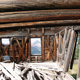 alta ghost town, colorado by Ilona Williams - Novices Only Objects & Still Life