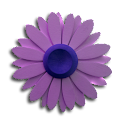 Flower Analog Clock Widget icon