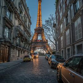 Eiffel Tower by Walid Ahmad - Buildings & Architecture Office Buildings & Hotels ( paris, eiffel tower, cities, night, travel )