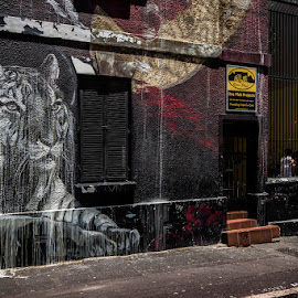 Tiger by Robert Johnson - City,  Street & Park  Neighborhoods ( grafitti, building )