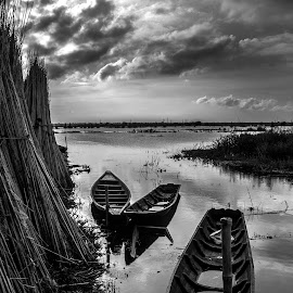BOATS by Tuhin Biswas - Transportation Boats