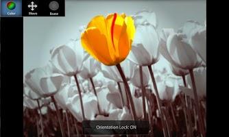 Screenshot of ColorUp Pro - Photo Editor