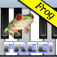 Frog Piano Free icon