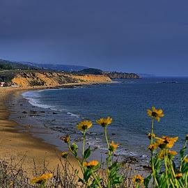 Crystal Cove State Beach by Jose Matutina - Landscapes Beaches ( orange county, newport beach, crystal cove beach,  )