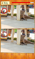 Screenshot of Find Photo Differences - Cats