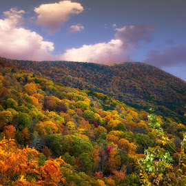 Colors of Fall by Dale Frazier - Landscapes Mountains & Hills ( clouds, hills, orange, mountain, oklahoma, green, mint, yellow, beauty, landscape, landscape photogrpahy, natural beauty, blue sky, small mountain, red, nature, blue,  )