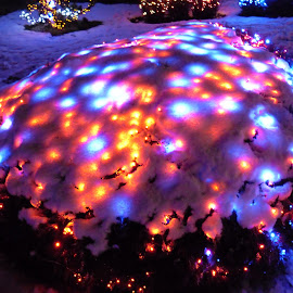 Snowcone by Dajana Petković - Abstract Light Painting ( lights, christmas lights, snow, christmas, bush )