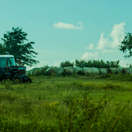 blue skies by Trey Walker - Novices Only Landscapes ( colour, sky, blue, color, tractor )