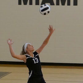 Concentration by Kimberly Havens-Lott - Sports & Fitness Other Sports ( volleyball, #13, mtp, ashley, ace )