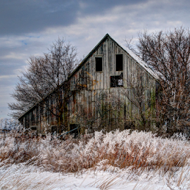 Winter Frost by John Larson - Buildings & Architecture Decaying & Abandoned ( clouds, sky, barn, grass, snow, frost, trees )