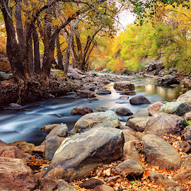 Ogden River Foliage by Lee Cuellar - Landscapes Waterscapes ( water, nature, waterscape, utah, autumn, foliage, fall, ogden river, long exposure, leaves, rocks, river )