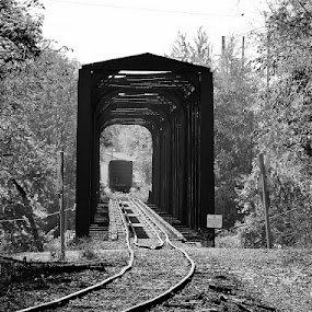 Railroad Bridge by Ann Overhulse - Black & White Landscapes