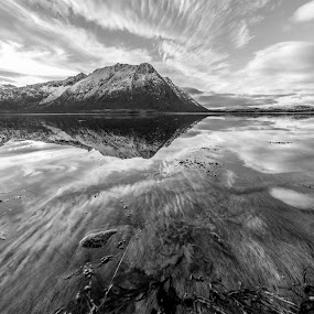 B/W reflections by Benny Høynes - Landscapes Waterscapes ( b/w, vesterålen, reflections, norway, fjord )