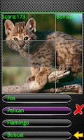 Screenshot of Kids Animal Quiz Pro