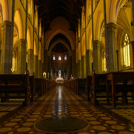 St Patrick's Cathederal by Scott Cove - Buildings & Architecture Places of Worship ( church, melbourne, cathedral )