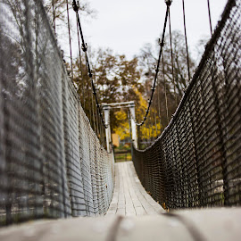 The old swinging bridge by Lisa Meyers Swanson - City,  Street & Park  City Parks (  )