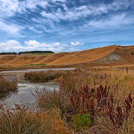 by Zoran Milutinovic - Landscapes Prairies, Meadows & Fields