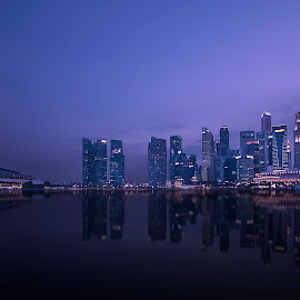 fiishbone by Lloyd Albert Manto - City,  Street & Park  Skylines ( bluehour, lloydmanto, lomhanz, sunset, longexposure, singapore, marinabay )