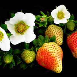 Strawberries by Bench Bryan - Food & Drink Fruits & Vegetables ( #benchbryanphotografix )