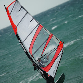 Wind Surfer by Jefferson Welsh - Sports & Fitness Watersports