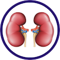 App Nephrology Clinical Tool APK for Kindle