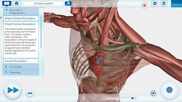 Screenshot of Human Anatomy EvoBooks