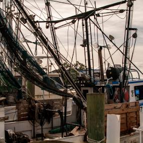 Going Fishing by Frank Matlock II - Transportation Boats ( shrimp, ocean, fishing, boat, dock )