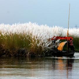 hide and seak by Santanu Dutta - Transportation Boats