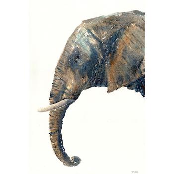 Elephant art painting africa watercolour