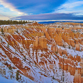 Sunset Hoodoos by Gregory Ruderman - Landscapes Caves & Formations ( utah, bryce, canyon, hoodoo )