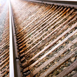 Railroad Tracks by Monica Smith - Transportation Railway Tracks ( railroad tracks, railroad, perspective, tracks,  )
