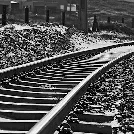 railway patterns  by Magdalena Wysoczanska - Abstract Patterns ( monochrome, patterns, black and white, rail, way )