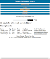 Screenshot of County Jail Inmate Search