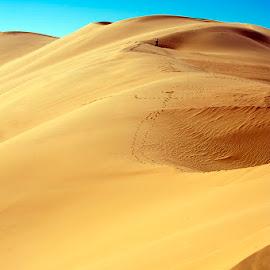 desert by Dolors Bas Vall - Landscapes Deserts ( blue sky, desert, yellow, steps, landscape, photography )