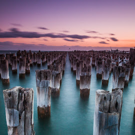 Princes Pier by Cory Marshall - Landscapes Sunsets & Sunrises (  )