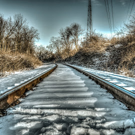 The Rails HDR 2 by Eric Witt - Landscapes Travel ( sky, railway, hdr, rails, railroad, snow, train, trees, tracks, golden hour,  )