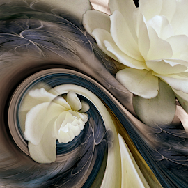 TWINS by Carmen Velcic - Digital Art Abstract ( abstract, blue, white, roses, flowers, digital )