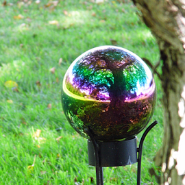 Rainbow Ball  by Lorie  Carpenter  - Artistic Objects Glass ( ball, tree, grass, gazing, artistic, rainbow )