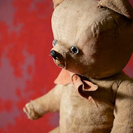 Teddy Bear by Miren Etcheverry - Artistic Objects Toys ( bear, child, noun ours, teddy bear, toy, vintage, antique, teddy )