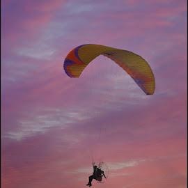Glide... by Claire Turner - Transportation Other ( uk, norfolk, hunstanton, summer )