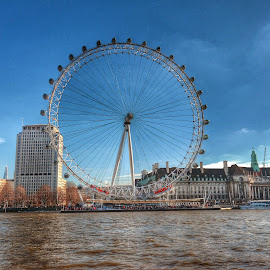 London Eye by Joanna Holland - Buildings & Architecture Statues & Monuments (  )