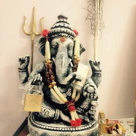 Ganesha by Dharmalingam Sriramlingam - Instagram & Mobile iPhone