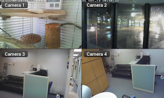 Screenshot of Cam Viewer for Linksys cameras