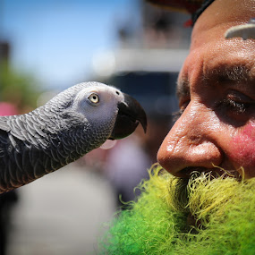 Beak To Nose by VAM Photography - People Street & Candids ( bird, cities, parrot, places, nyc, people, street photography,  )