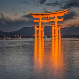 Glowing Torii Gate by Sue Matsunaga - Buildings & Architecture Statues & Monuments