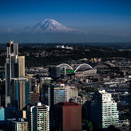 Seattle  by Blanca Braun - City,  Street & Park  Skylines