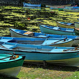 by Berrin Aydın - Transportation Boats (  )